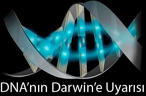 DNA'nın Darwin'e Uyarısı