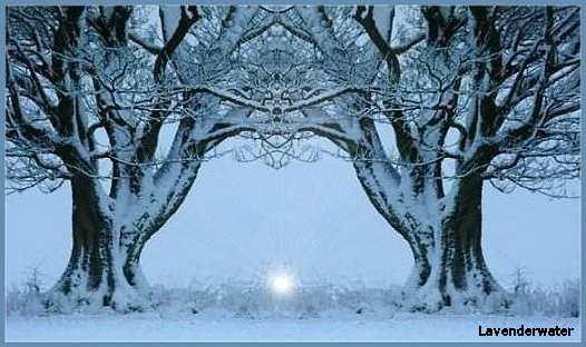 [winterscene1.jpg]