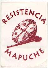 RESISTENCIA MAPUCHE Y LUCHA!!!