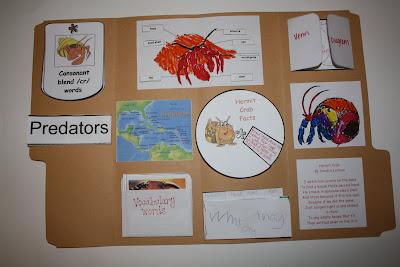 LAPBOOK ( libro fai da te che si ricava da una semplice cartella a tre lembi e qualche foglio di carta colorata) Hermit+crab+lapbook+021