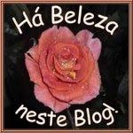 Um blog com Beleza
