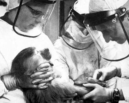 animal testing a brief account of Stretching behind us is a long history of animal testing upon which many advances in science, and nobel prizes, are based.
