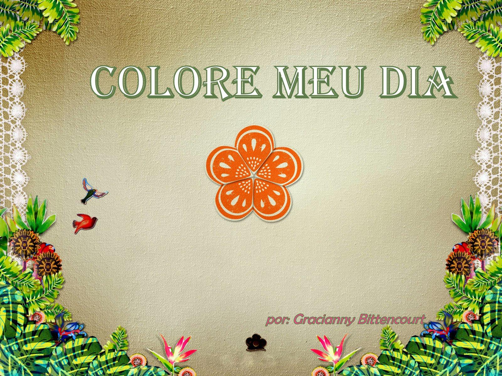 Colore meu dia
