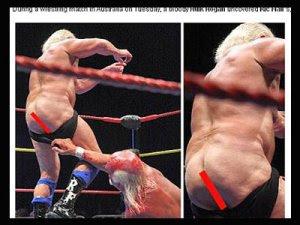 La lucha libre profesional estadounidense mujer desnuda