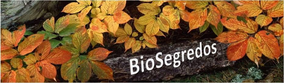BioSegredos