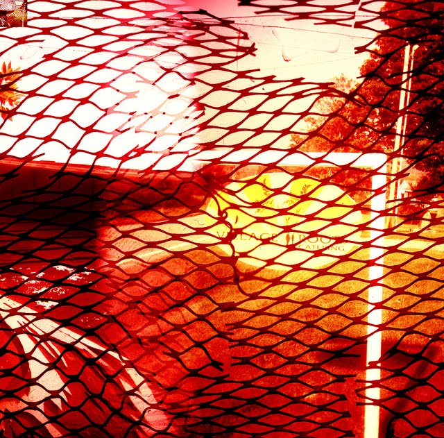 Pictures thoughts and comments holga more fun with red net - Draadloze bloei lamp ...