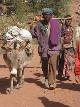 Donkey carries load