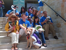 Royal doggie court and owners