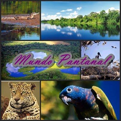 Mundo Pantanal
