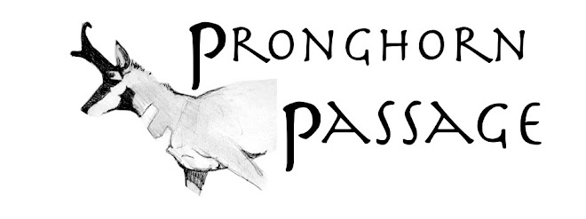 Pronghorn Passage