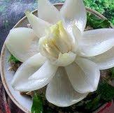 Урок по карвинг как да си направим лилия от лук