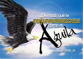 RED DE  AMIGOS PENTECOSTALES