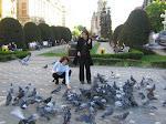 Timisoara - piata cu porumbei