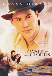 Baixar Filme Caminhando nas Nuvens (Dublado)