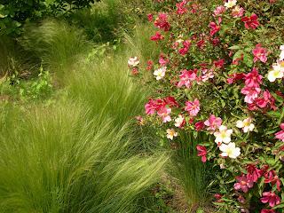 Paris côté jardin: Jardin du Musée du Quai Branly, des idées à piquer