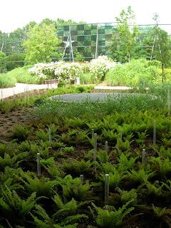 Paris c t jardin jardin d 39 t au mus e du quai branly for Jardin quai branly