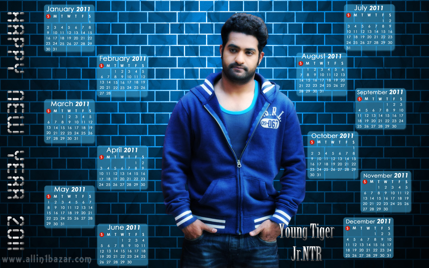 Jr NTR's latest Telugu hit movie Baadshah 50days special hq wallpapers ...