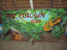 PRE COSQUIN 2009