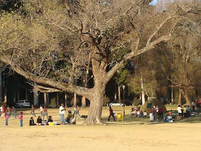 Vida Cotidiana en Johannesburgo (III). Domingo en Zoo Lake