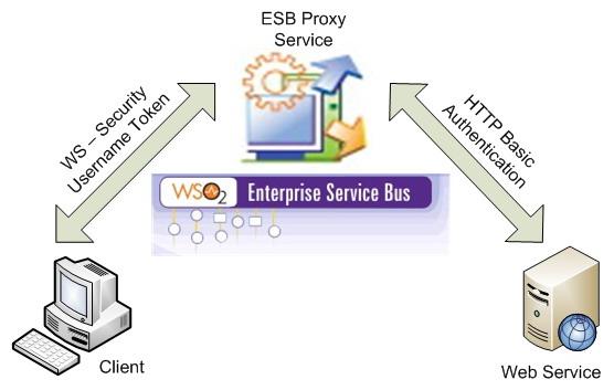 server download proxy wingate-17