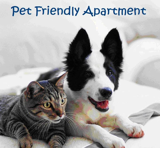 Pet Friendly Hotels Albert Lea Mn