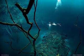 sungai di dalam laut Cenote Angelita