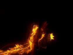Awesome Pic of Fire