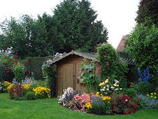 """Florile din... """"Grădina mea"""""""