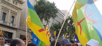 Banderes amazigues en la manifestació del 10 de juliol a Barcelona
