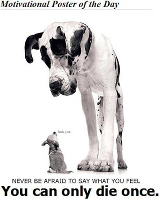 http://3.bp.blogspot.com/_K9xydntQfRk/THRjXfVXfpI/AAAAAAAABag/_hK02k_lloo/s400/life-motivational-poster.jpg