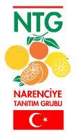 The NTG logo