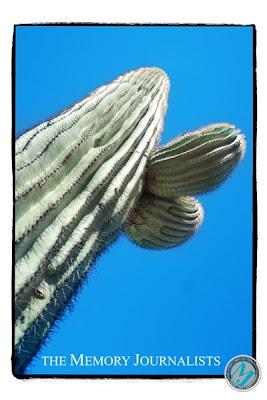 Arizona Travel Photos 6