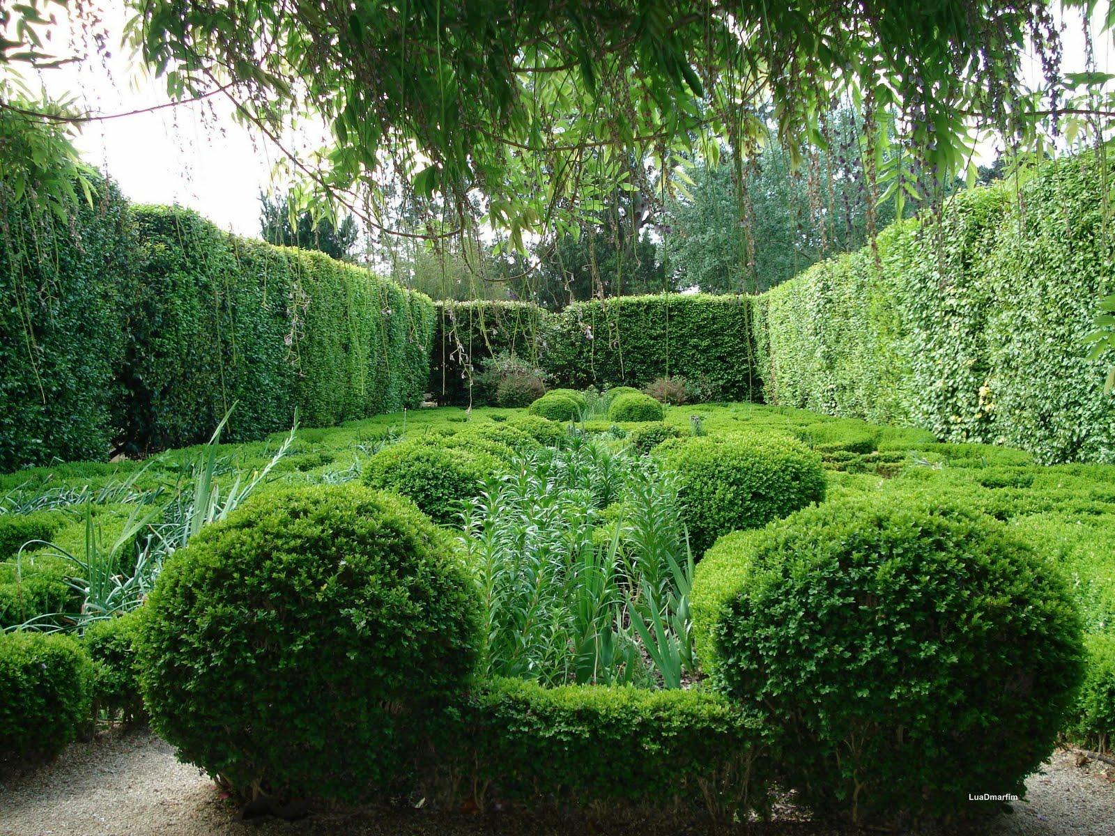 luaDmarfim Jardim Botânico do Porto  os jardins I