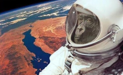 Monkeys to Mars?