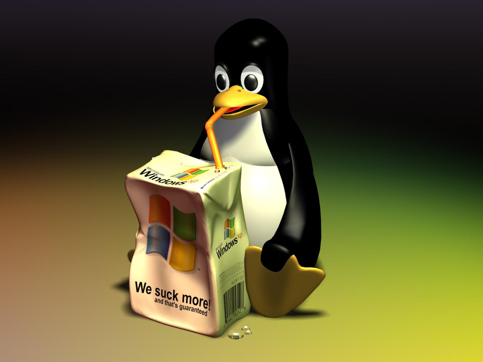 http://3.bp.blogspot.com/_KEb6pta18z4/TJvg8hjDX5I/AAAAAAAAAAQ/PIDKIkKQvdw/s1600-R/linux-wallpaper--1600x1200--tux-we-suck-more.jpg