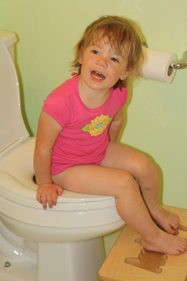 family toilet seat wood. Audrey loves to  tag along the bathroom with both of us In fact sometimes she tries push you off potty saying turn The Wood Family Potty Training