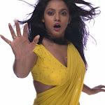Neetu Chandra Sexy In Saree   Neetu Chandra Hot