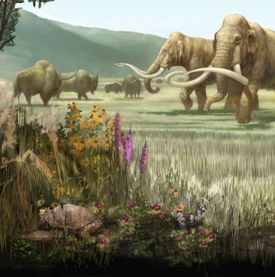 pleistocene rewilding an optimistic agenda for Pleistocene re-wilding is a proactive idea that could galvanize the conservation et alpleistocene rewilding: an optimistic agenda for twenty-first century.