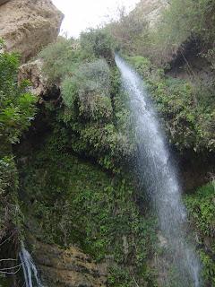 Shulamit Falls at Ein Gedi