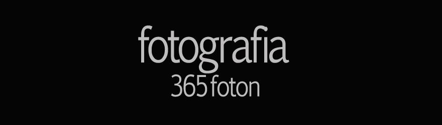 fotografia - 365 foton