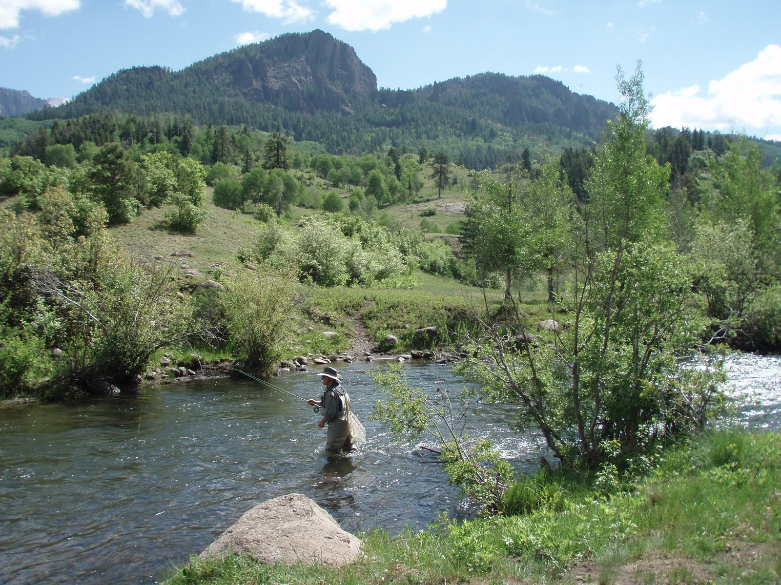 The fly guide williams creek and the san juan river for San juan fly fishing