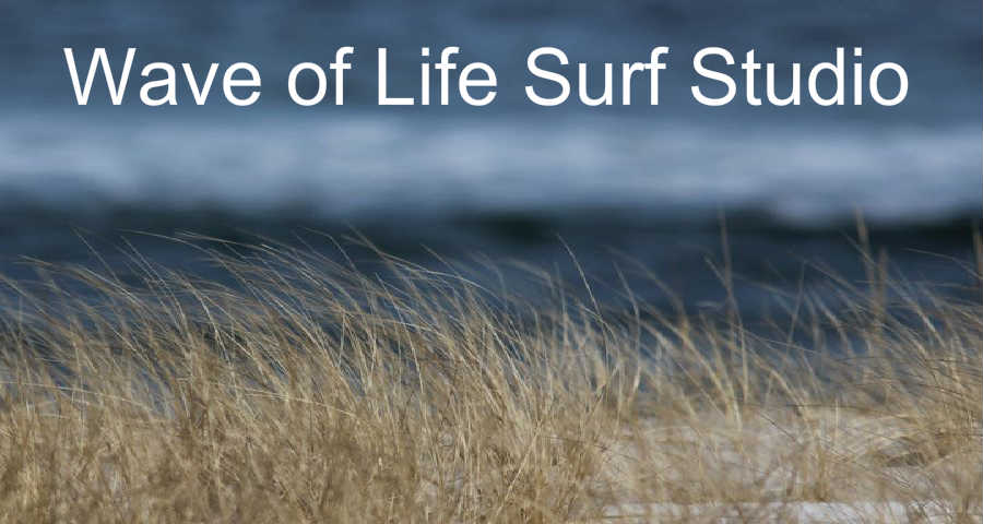 Wave of Life Surf Studio