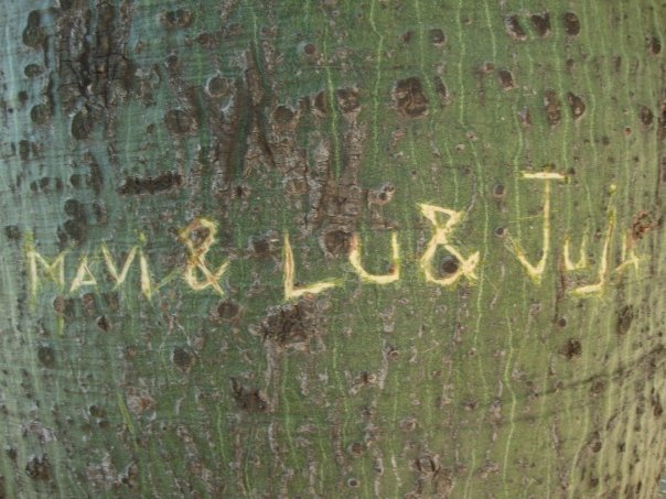 Mavi & Lu & Juja