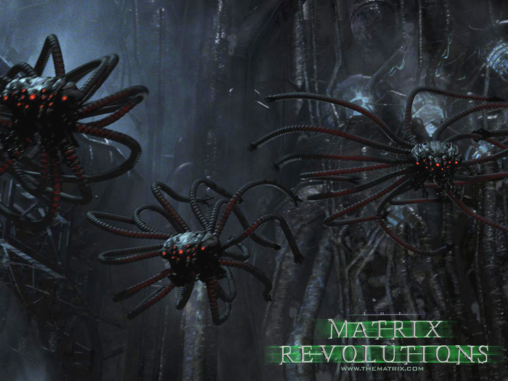 http://3.bp.blogspot.com/_KKU3_iddQBU/TBRWBzCRkrI/AAAAAAAADOM/oaGABtwY8Ls/s1600/The_Matrix_Revolutions_Wallpaper_19_1024.jpg