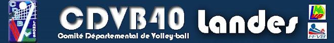 Site du Comité des Landes de Volley-Ball