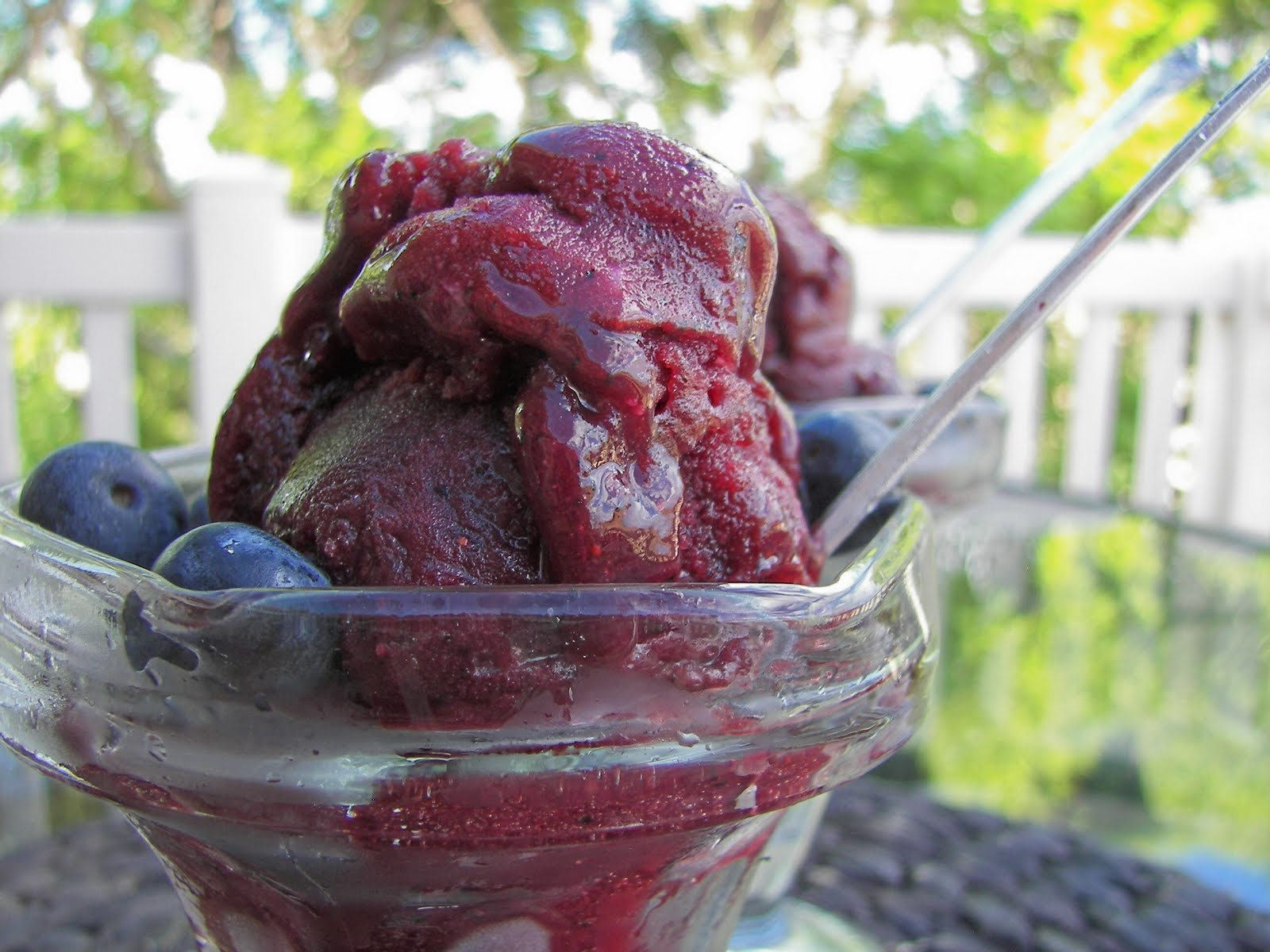 Blueberry Sorbet Recipe Recipe For Blueberry Sorbet