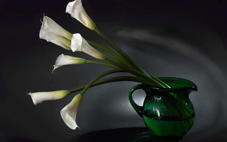 http://3.bp.blogspot.com/_KLJU3hHDGVM/TBIqMk9wKSI/AAAAAAAACTg/bveeWgt-l7M/s1600/Flower+pot_cute_1440x900.jpg