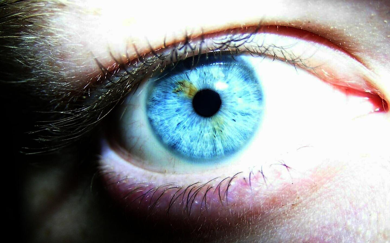New Art Funny Wallpapers Jokes: Blue Eyes Photos HD 1440x900 Desktop ...