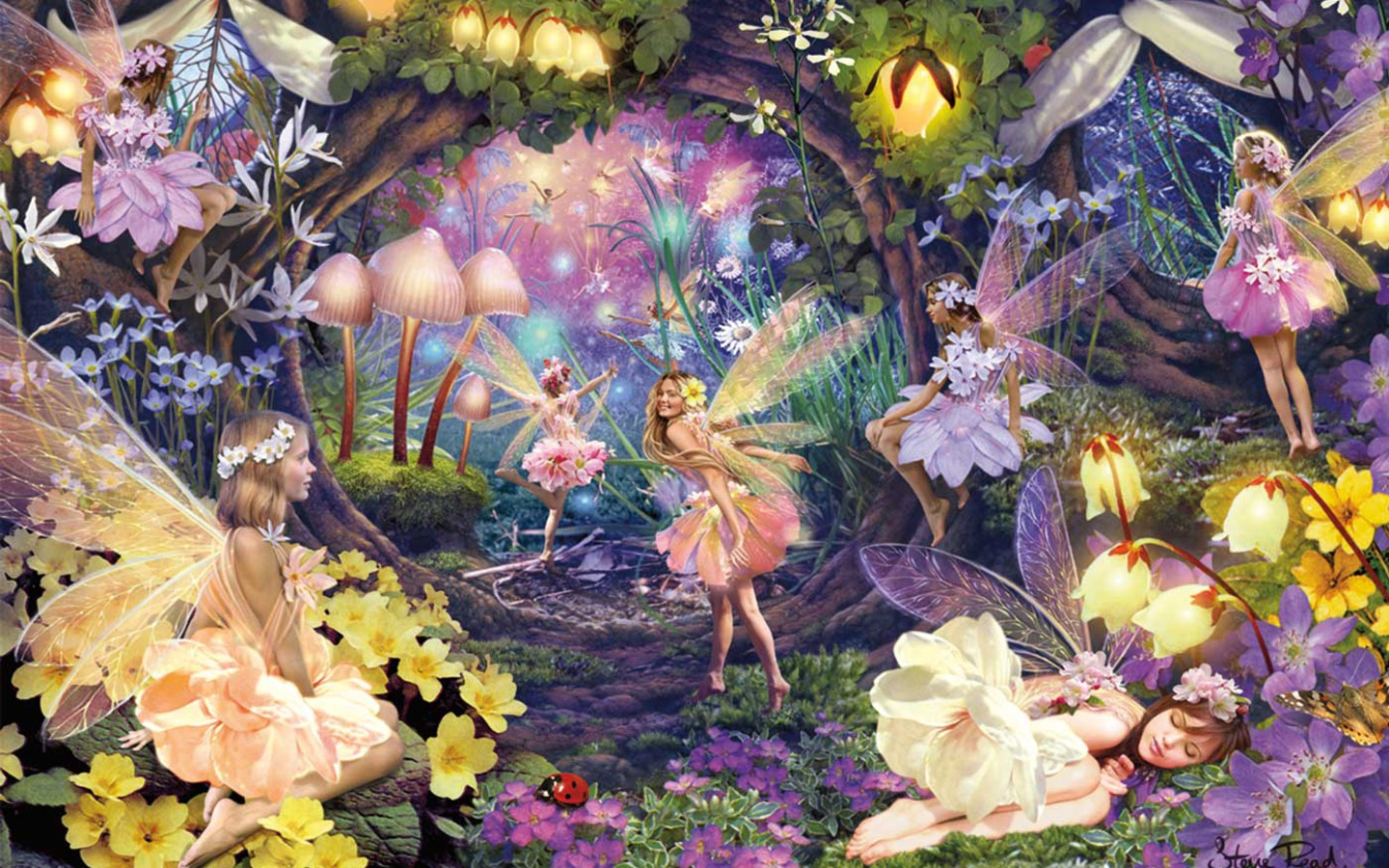Beautiful fantasy angels wallpapers 1440x900 for Fairy garden mural