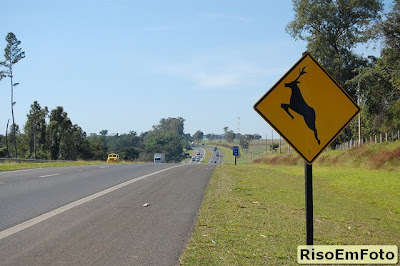 São Paulo placa alerta para travessia de viados